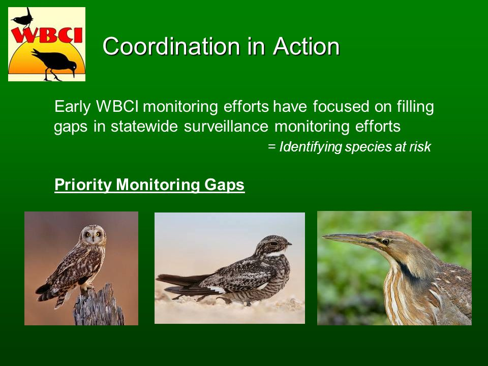 Coordination in Action Early WBCI monitoring efforts have focused on filling gaps in statewide surveillance monitoring efforts = Identifying species at risk Priority Monitoring Gaps