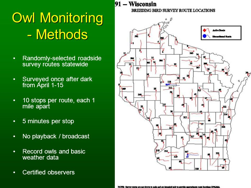 Owl Monitoring - Methods Randomly-selected roadside survey routes statewide Surveyed once after dark from April 1-15 10 stops per route, each 1 mile apart 5 minutes per stop No playback / broadcast Record owls and basic weather data Certified observers