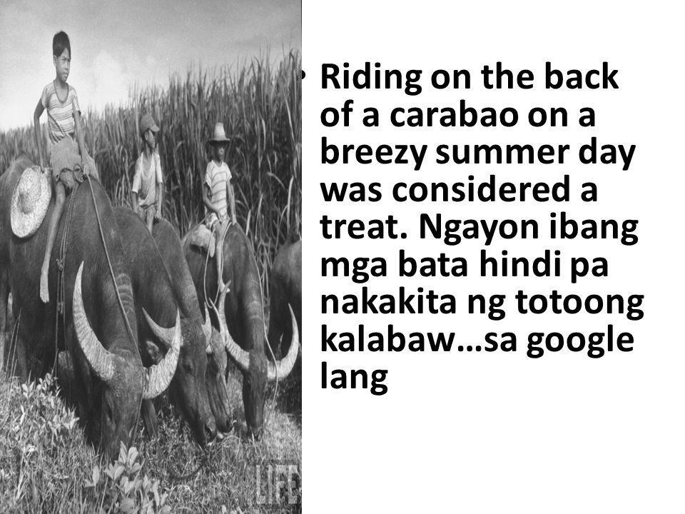 Riding on the back of a carabao on a breezy summer day was considered a treat.