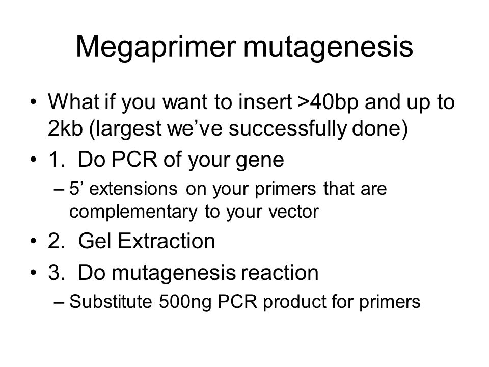 Megaprimer mutagenesis What if you want to insert >40bp and up to 2kb (largest weve successfully done) 1.