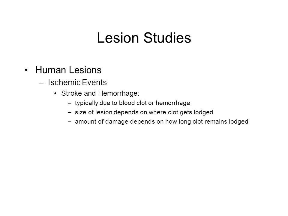 Lesion Studies Human Lesions –Ischemic Events Stroke and Hemorrhage: –typically due to blood clot or hemorrhage –size of lesion depends on where clot gets lodged –amount of damage depends on how long clot remains lodged