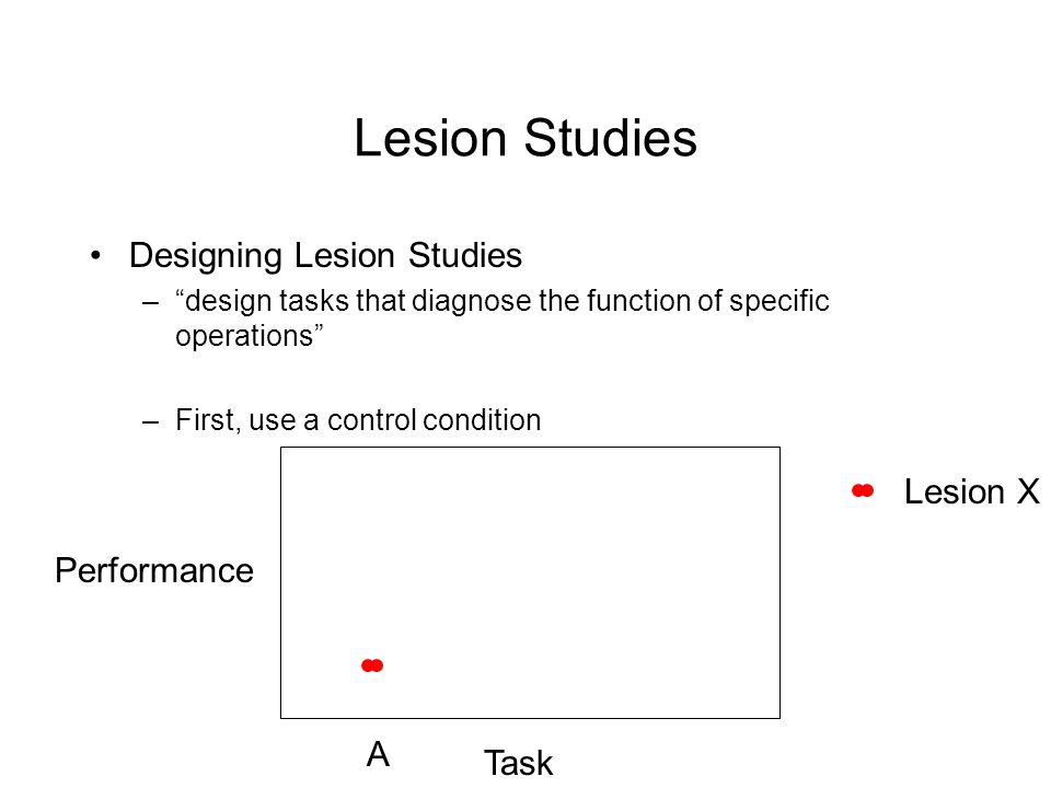 Lesion Studies Designing Lesion Studies –design tasks that diagnose the function of specific operations –First, use a control condition Performance Task A Lesion X