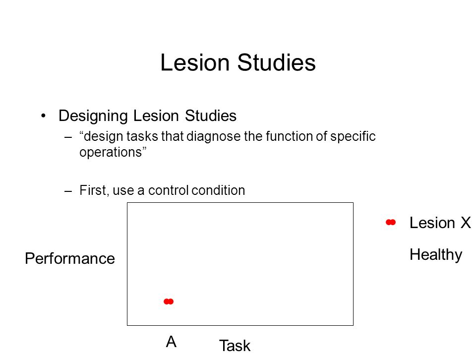 Lesion Studies Designing Lesion Studies –design tasks that diagnose the function of specific operations –First, use a control condition Performance Task A Lesion X Healthy