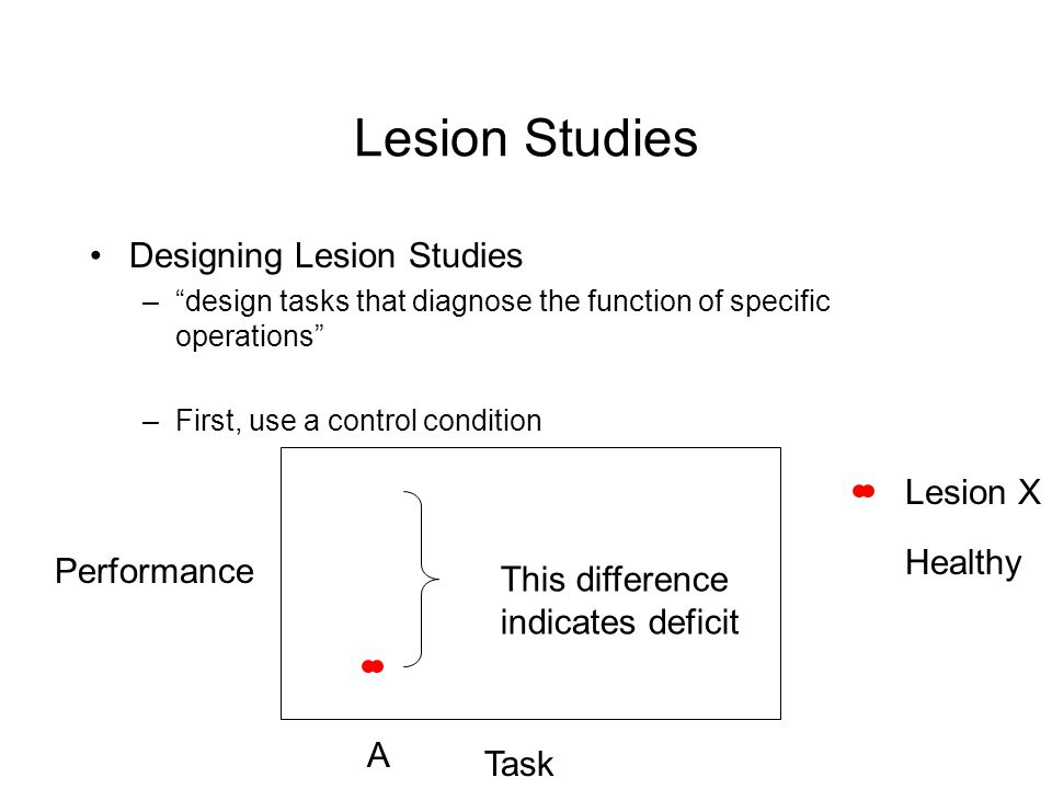 Lesion Studies Designing Lesion Studies –design tasks that diagnose the function of specific operations –First, use a control condition Performance Task A Lesion X Healthy This difference indicates deficit
