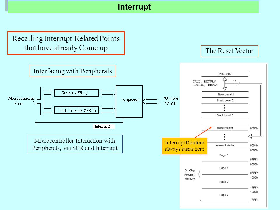 The Reset Vector Interrupt Routine always starts here Microcontroller Interaction with Peripherals, via SFR and Interrupt Interfacing with Peripherals Recalling Interrupt-Related Points that have already Come up Interrupt