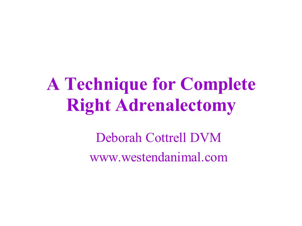 A Technique for Complete Right Adrenalectomy Deborah Cottrell DVM www.westendanimal.com