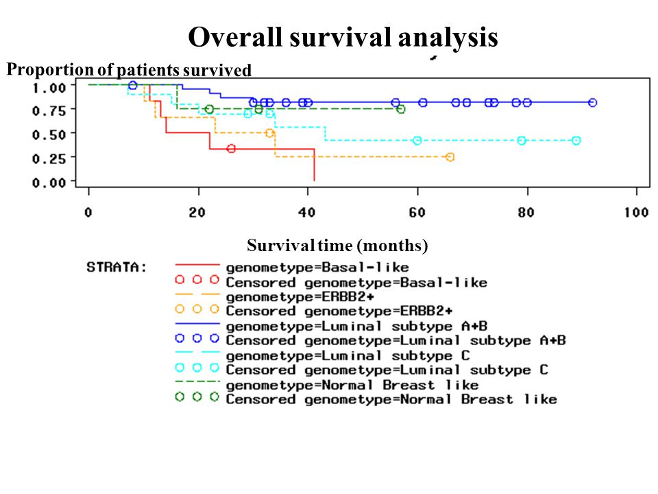 Survival time (months) Proportion of patients survived Overall survival analysis