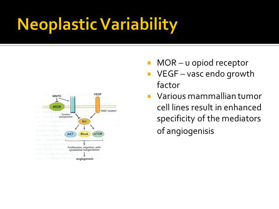 MOR – u opiod receptor VEGF – vasc endo growth factor Various mammallian tumor cell lines result in enhanced specificity of the mediators of angiogenisis