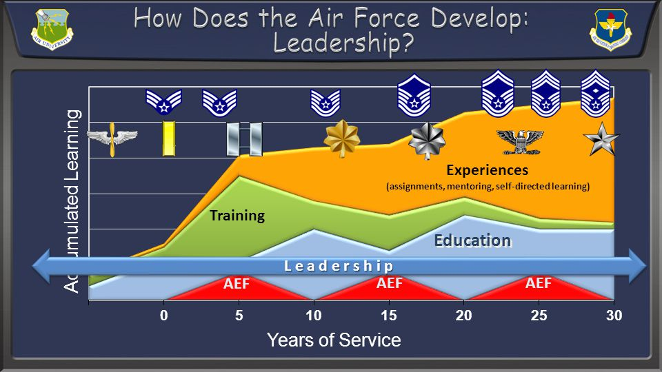AEF L e a d e r s h i p Education Training Experiences (assignments, mentoring, self-directed learning)