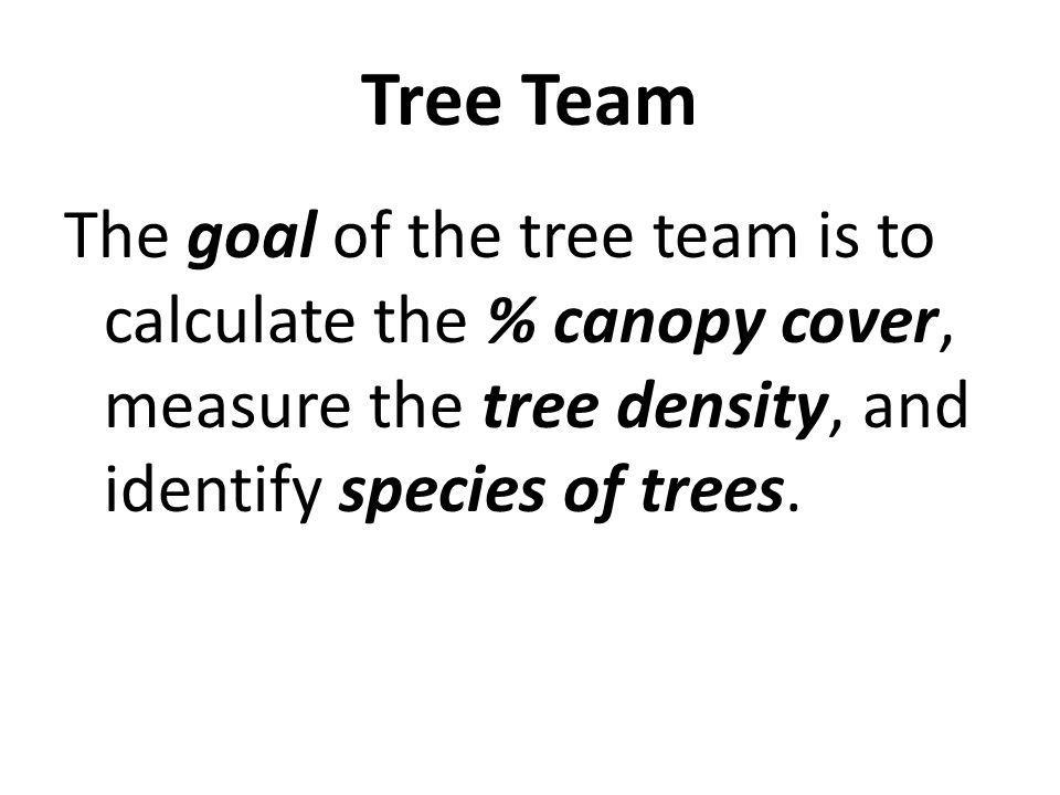 The goal of the tree team is to calculate the % canopy cover, measure the tree density, and identify species of trees.