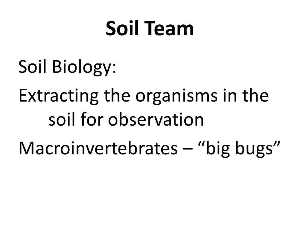 Soil Biology: Extracting the organisms in the soil for observation Macroinvertebrates – big bugs Soil Team