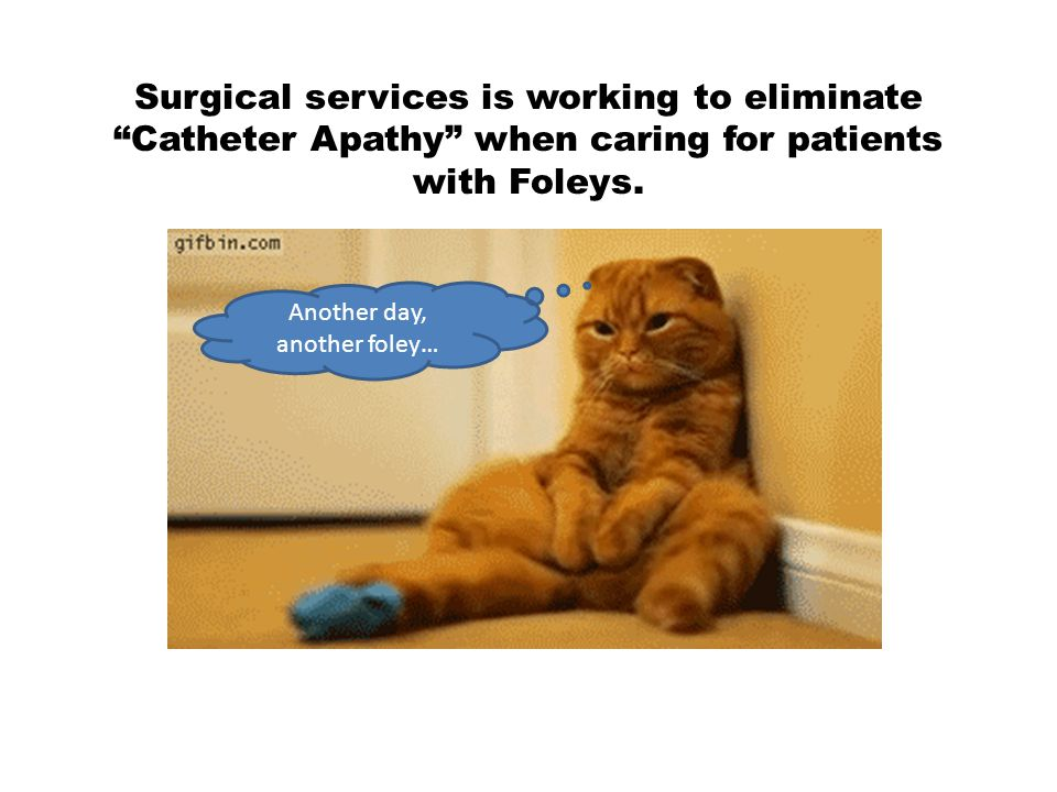 Surgical services is working to eliminate Catheter Apathy when caring for patients with Foleys.