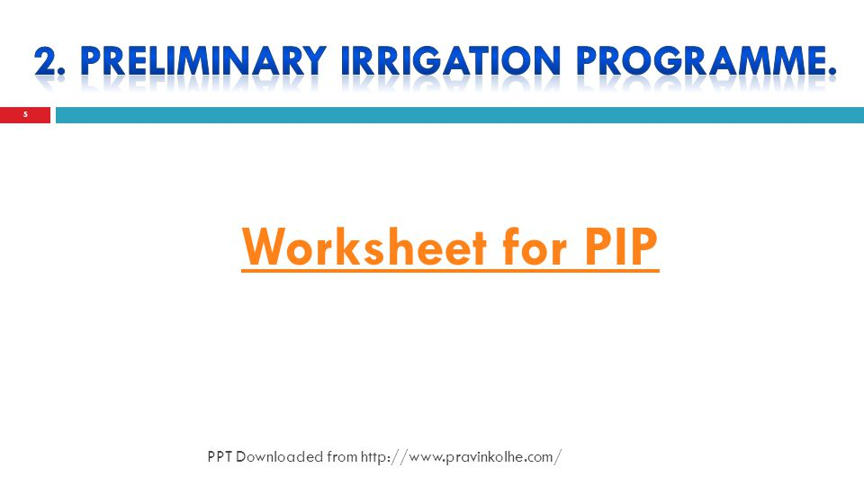 5 Worksheet for PIP