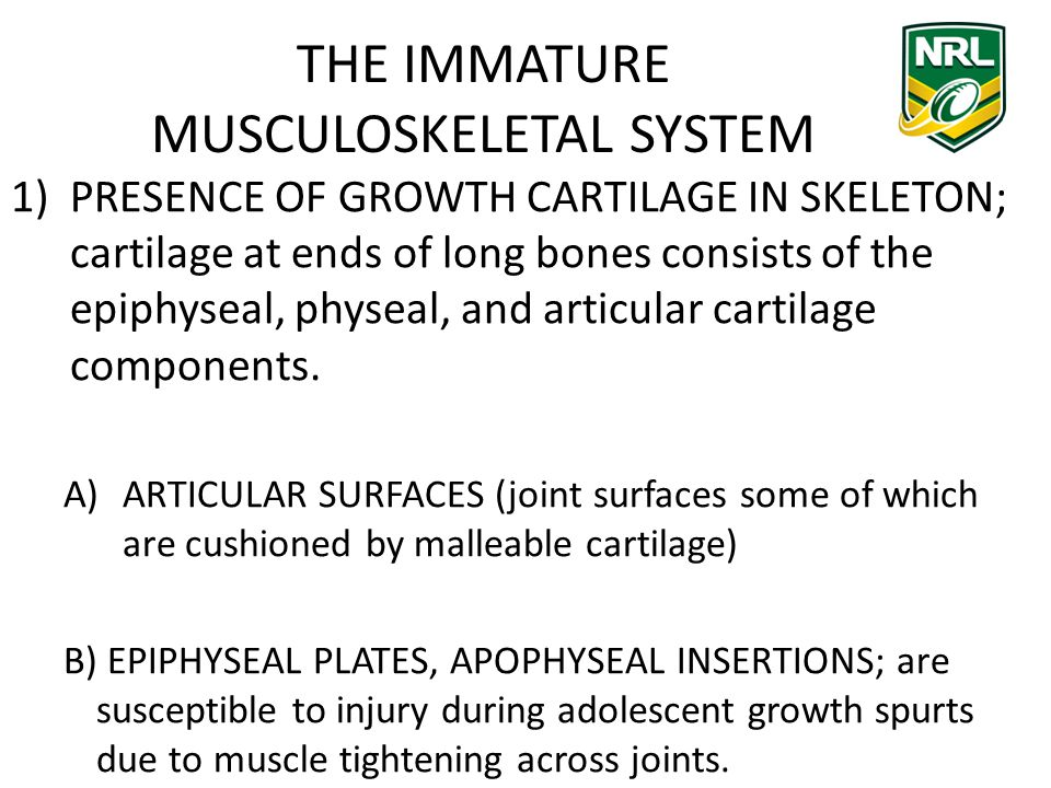 THE IMMATURE MUSCULOSKELETAL SYSTEM 1)PRESENCE OF GROWTH CARTILAGE IN SKELETON; cartilage at ends of long bones consists of the epiphyseal, physeal, and articular cartilage components.