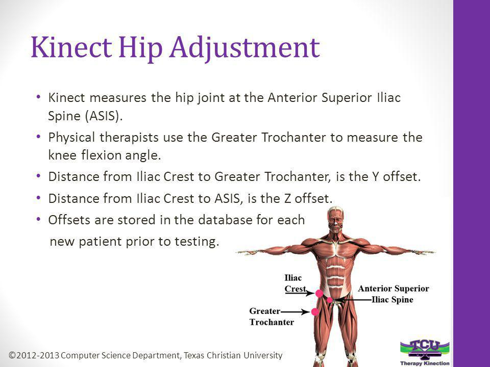 Kinect Hip Adjustment Kinect measures the hip joint at the Anterior Superior Iliac Spine (ASIS).