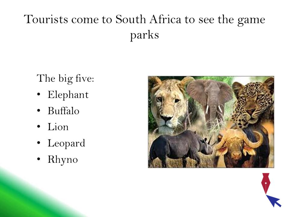 Tourists come to South Africa to see the game parks The big five: Elephant Buffalo Lion Leopard Rhyno