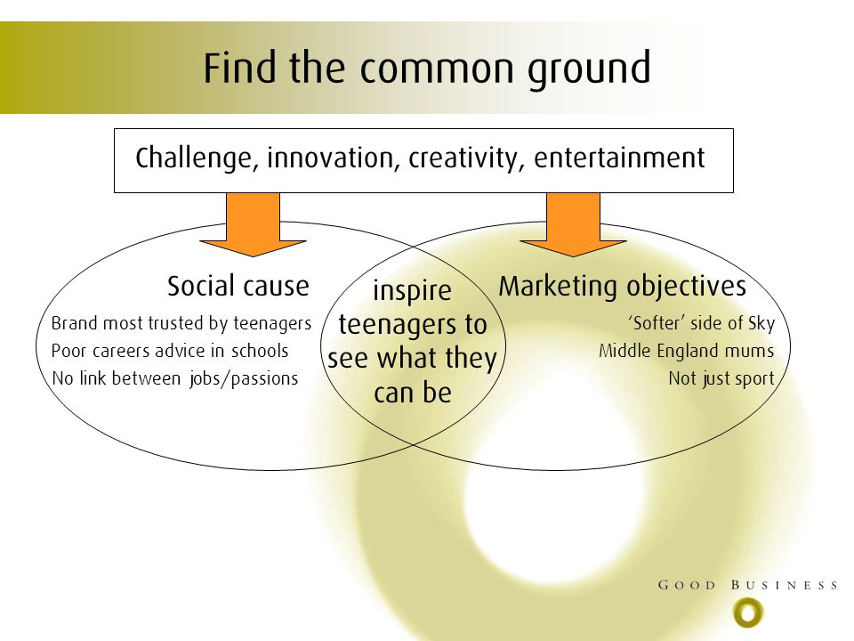 Find the common ground Challenge, innovation, creativity, entertainment Social causeMarketing objectives inspire teenagers to see what they can be Brand most trusted by teenagers Poor careers advice in schools No link between jobs/passions Softer side of Sky Middle England mums Not just sport