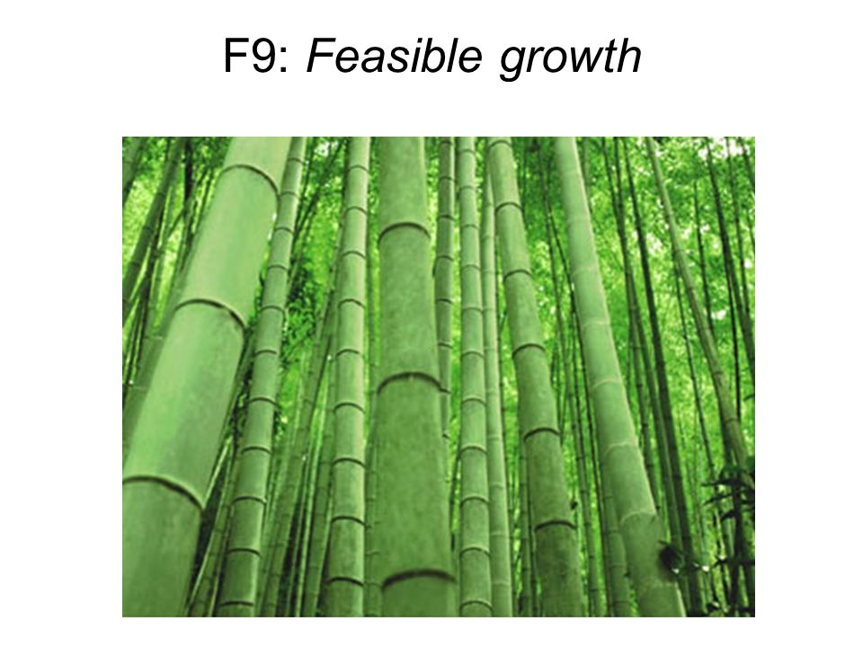 F9: Feasible growth