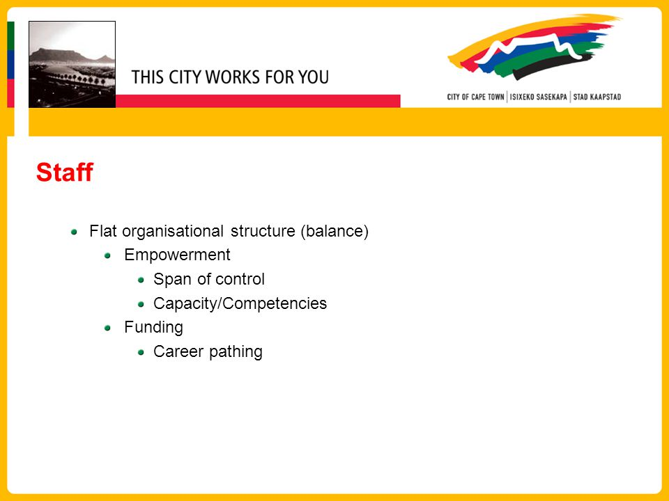 Staff Flat organisational structure (balance) Empowerment Span of control Capacity/Competencies Funding Career pathing