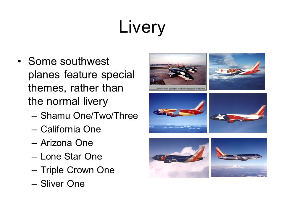 Livery Some southwest planes feature special themes, rather than the normal livery –Shamu One/Two/Three –California One –Arizona One –Lone Star One –Triple Crown One –Sliver One