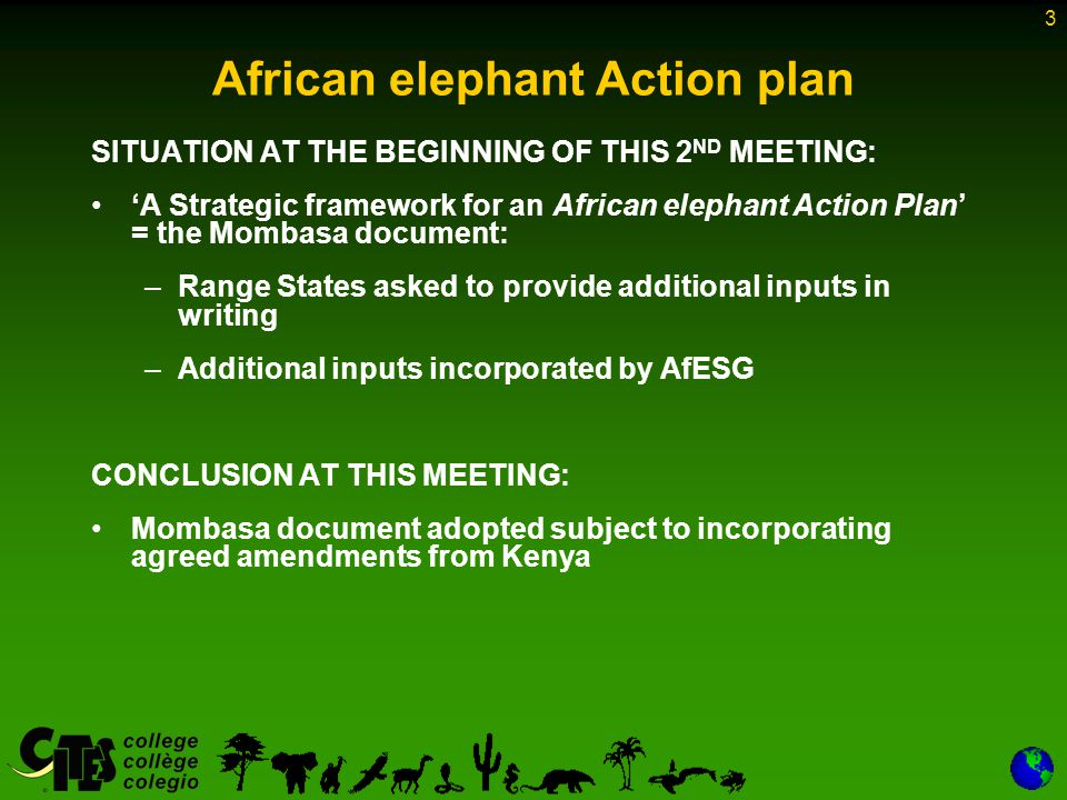 3 African elephant Action plan SITUATION AT THE BEGINNING OF THIS 2 ND MEETING: A Strategic framework for an African elephant Action Plan = the Mombasa document: –Range States asked to provide additional inputs in writing –Additional inputs incorporated by AfESG CONCLUSION AT THIS MEETING: Mombasa document adopted subject to incorporating agreed amendments from Kenya