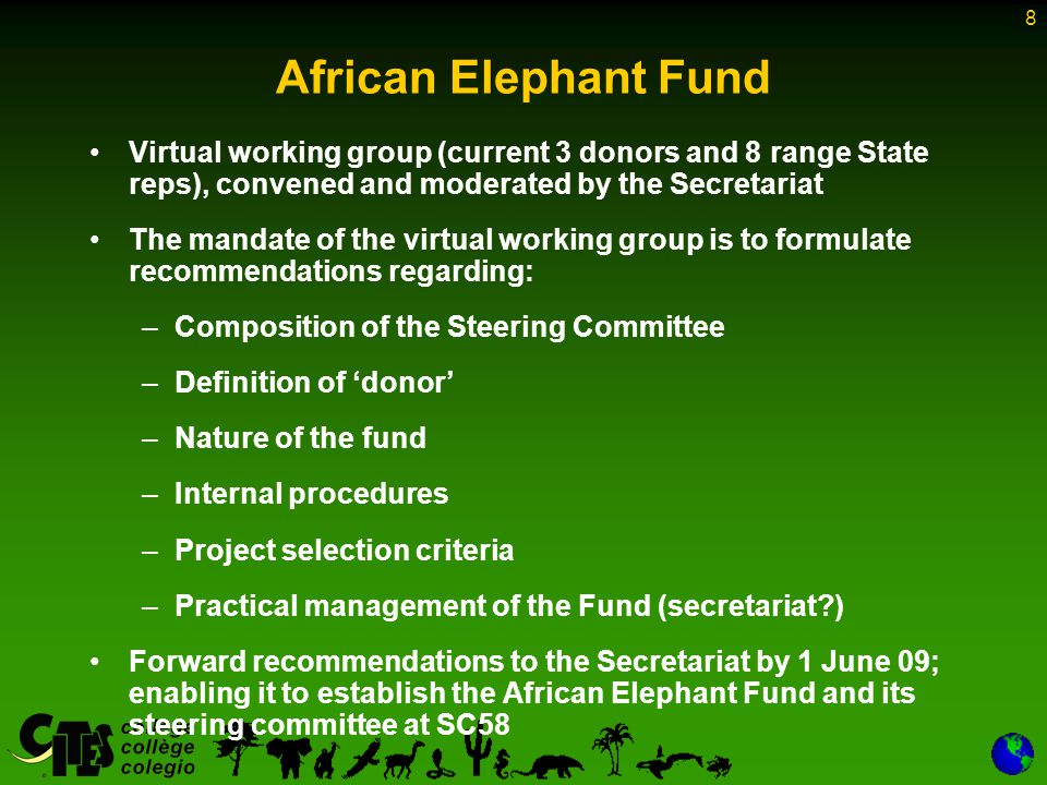 8 African Elephant Fund Virtual working group (current 3 donors and 8 range State reps), convened and moderated by the Secretariat The mandate of the virtual working group is to formulate recommendations regarding: –Composition of the Steering Committee –Definition of donor –Nature of the fund –Internal procedures –Project selection criteria –Practical management of the Fund (secretariat ) Forward recommendations to the Secretariat by 1 June 09; enabling it to establish the African Elephant Fund and its steering committee at SC58