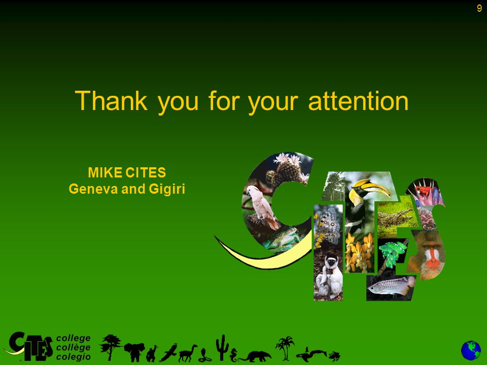 9 Thank you for your attention MIKE CITES Geneva and Gigiri