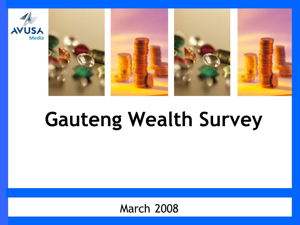 March 2008 Gauteng Wealth Survey
