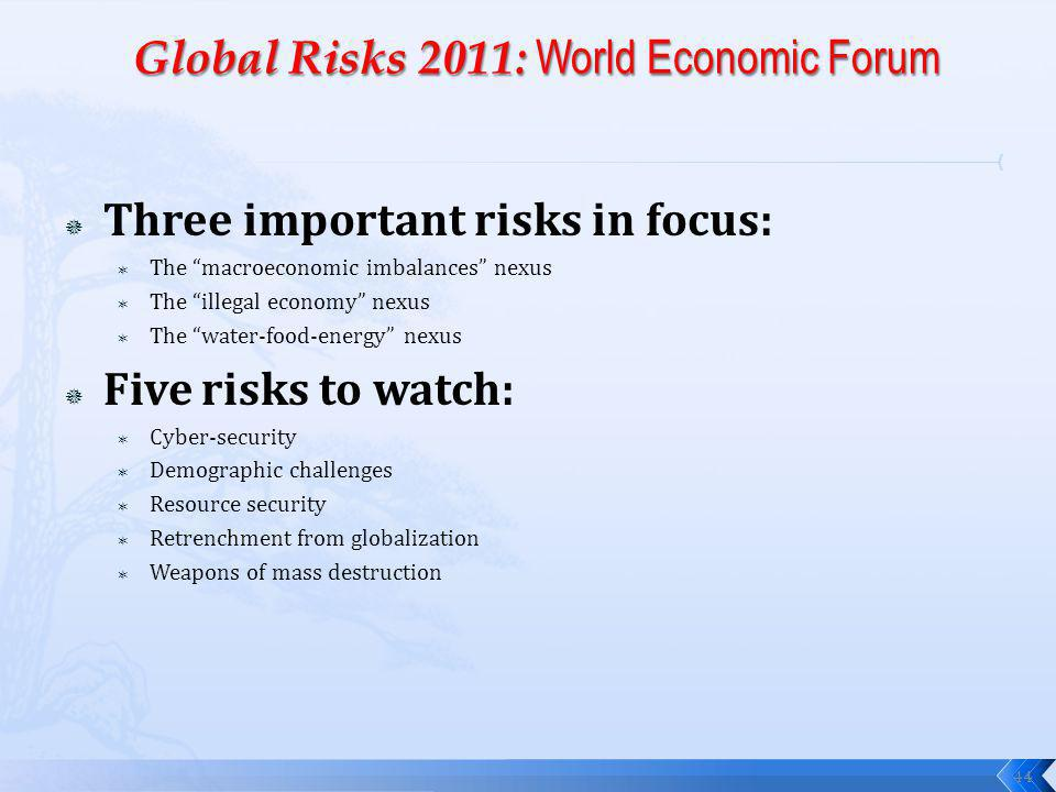 Three important risks in focus: The macroeconomic imbalances nexus The illegal economy nexus The water-food-energy nexus Five risks to watch: Cyber-security Demographic challenges Resource security Retrenchment from globalization Weapons of mass destruction 44