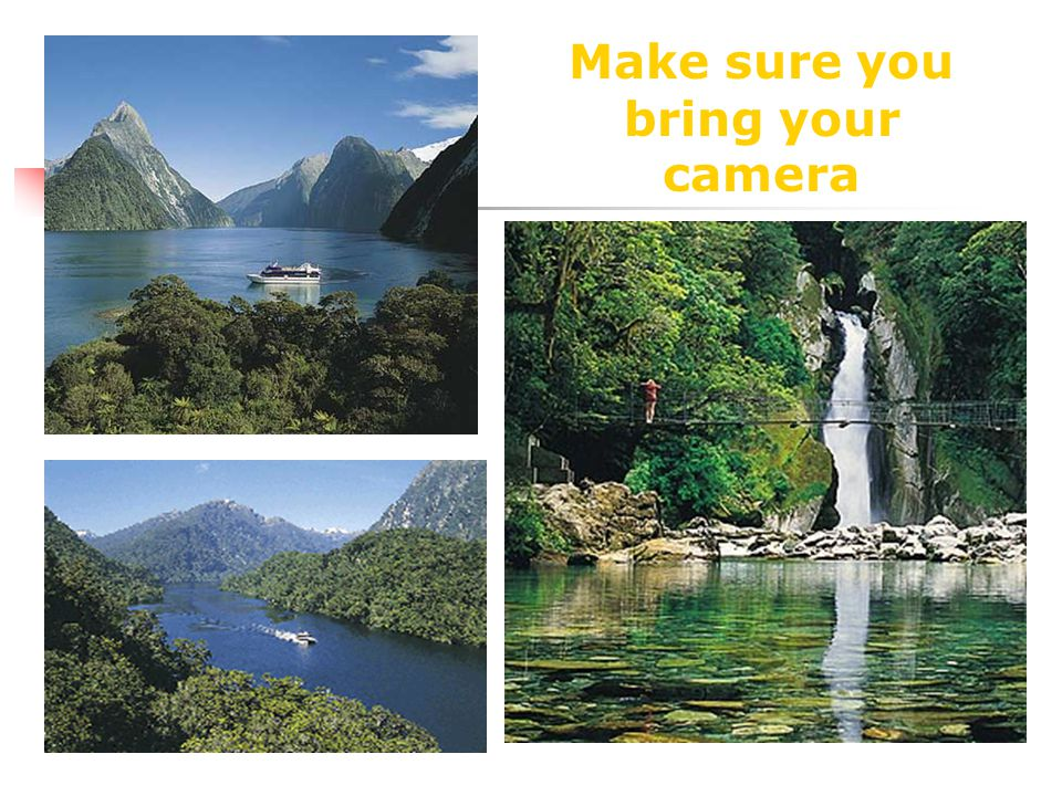Milford Sound Boat Cruise The perfect way to discover the beautiful scenery