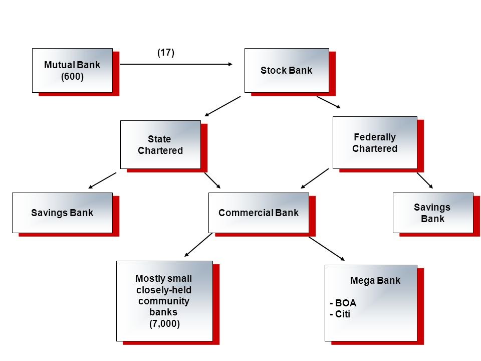 Mutual Bank (600) Mutual Bank (600) Stock Bank State Chartered State Chartered Federally Chartered Federally Chartered Savings Bank Commercial Bank Savings Bank Savings Bank Mostly small closely-held community banks (7,000) Mostly small closely-held community banks (7,000) Mega Bank - BOA - Citi Mega Bank - BOA - Citi (17)