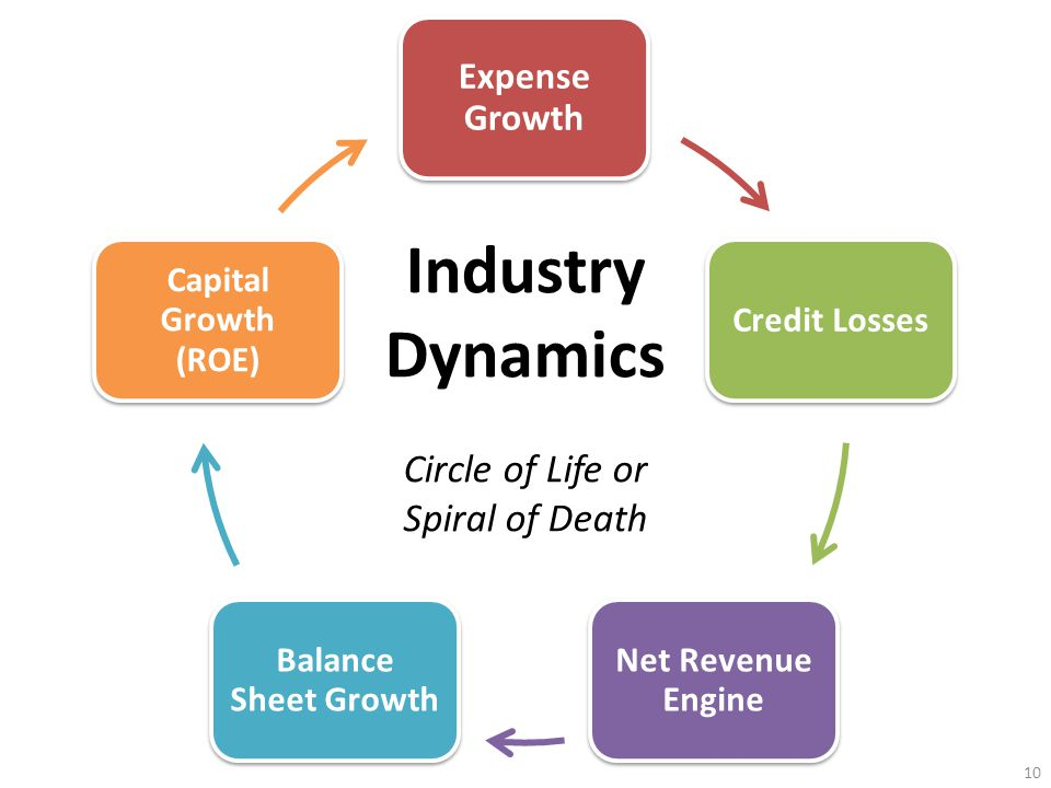 Expense Growth Credit Losses Net Revenue Engine Balance Sheet Growth Capital Growth (ROE) Industry Dynamics Circle of Life or Spiral of Death 10