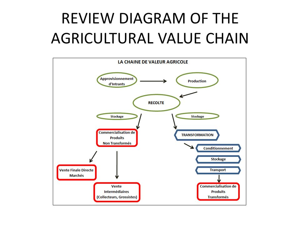 REVIEW DIAGRAM OF THE AGRICULTURAL VALUE CHAIN