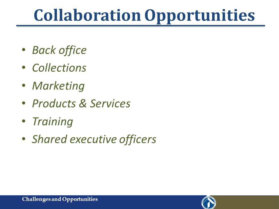 Collaboration Opportunities Back office Collections Marketing Products & Services Training Shared executive officers Challenges and Opportunities