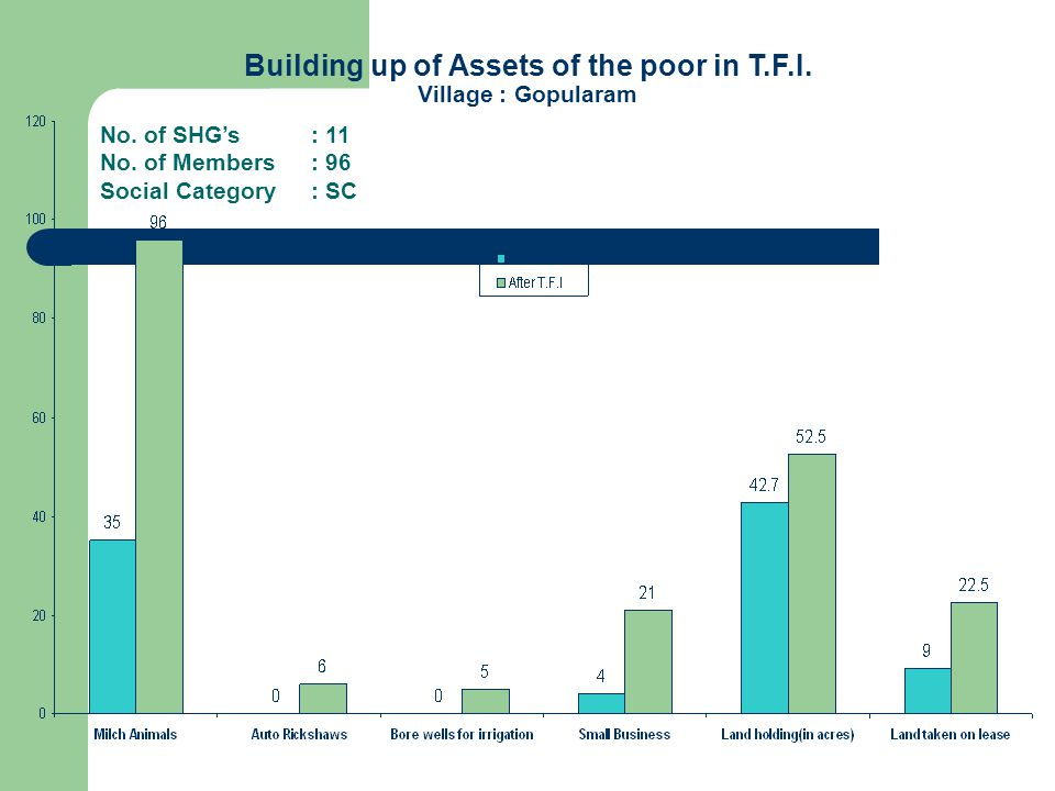 Building up of Assets of the poor in T.F.I. Village : Gopularam No.