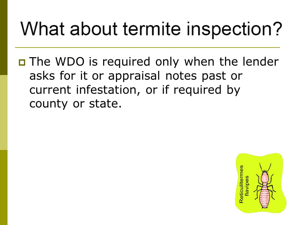 The WDO is required only when the lender asks for it or appraisal notes past or current infestation, or if required by county or state.