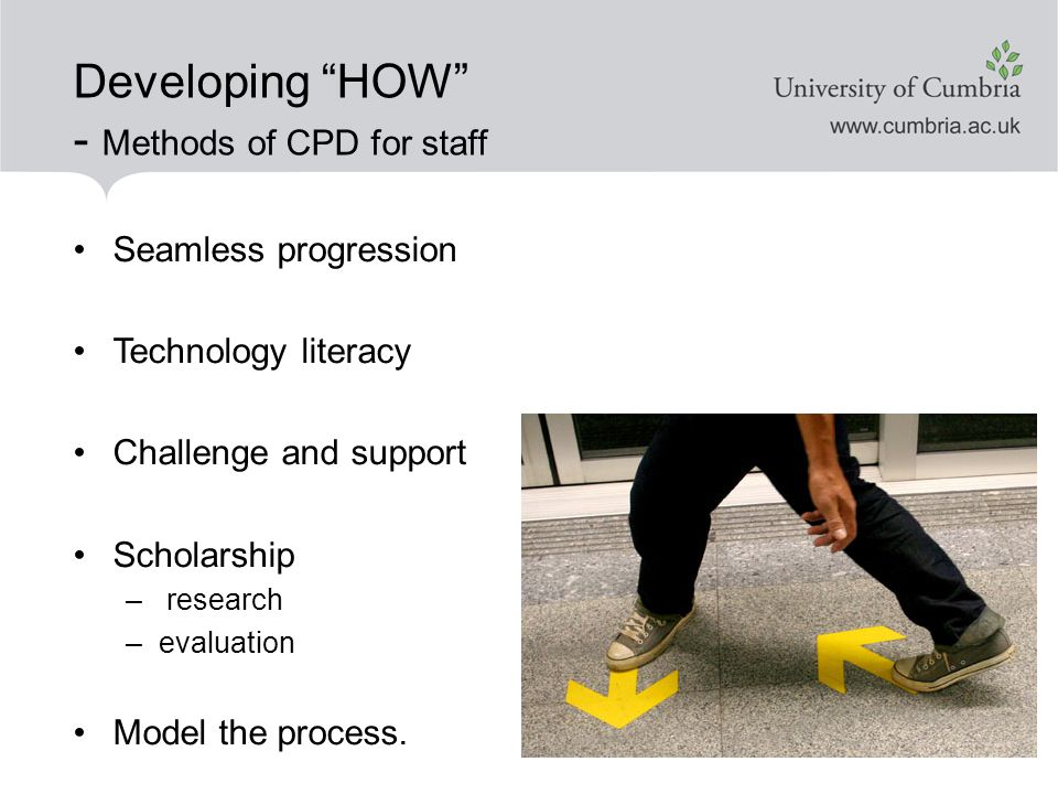 Developing HOW - Methods of CPD for staff Seamless progression Technology literacy Challenge and support Scholarship – research –evaluation Model the process.