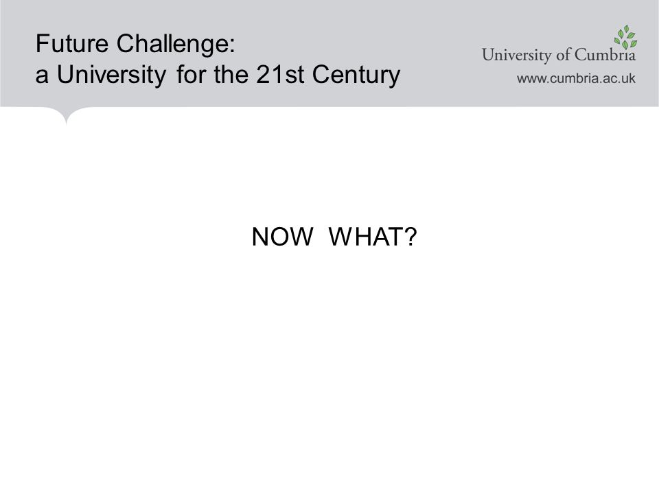Future Challenge: a University for the 21st Century NOW WHAT