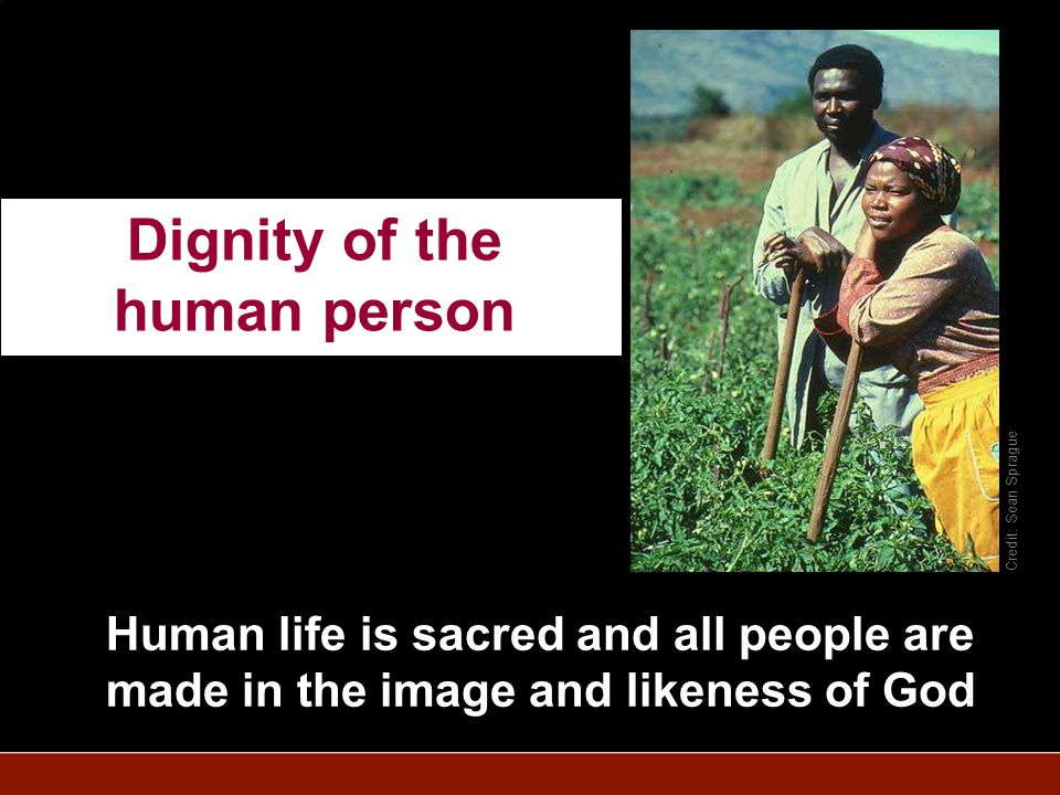Credit: Sean Sprague Human life is sacred and all people are made in the image and likeness of God Dignity of the human person