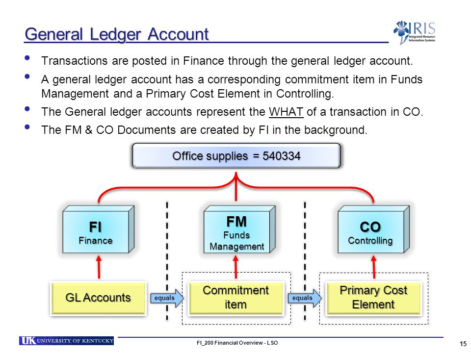 FI_200 Financial Overview - LSO 15 General Ledger Account Transactions are posted in Finance through the general ledger account.