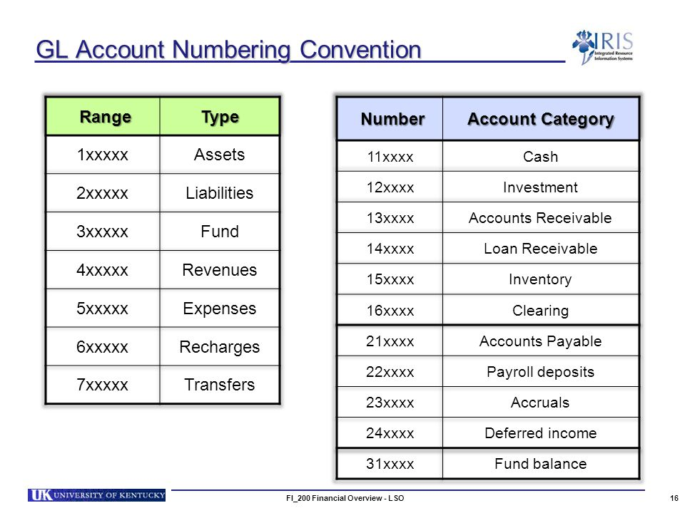 GL Account Numbering Convention FI_200 Financial Overview - LSO16