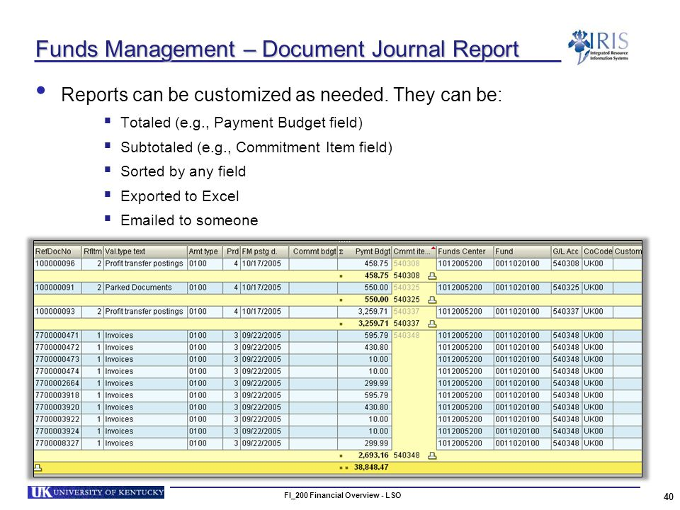 FI_200 Financial Overview - LSO 40 Funds Management – Document Journal Report Reports can be customized as needed.