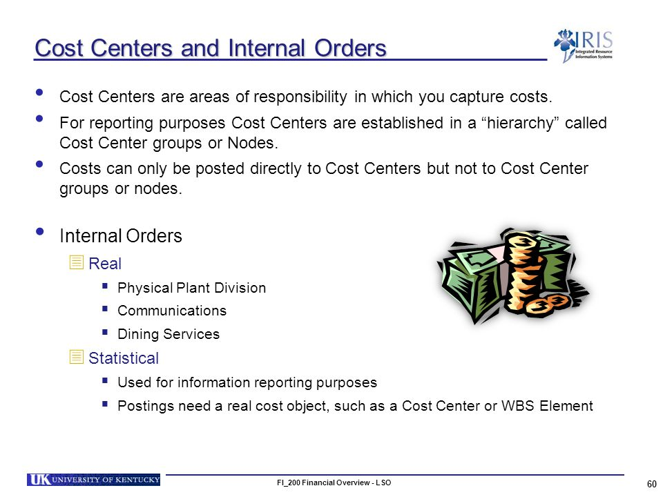 FI_200 Financial Overview - LSO 60 Cost Centers and Internal Orders Cost Centers are areas of responsibility in which you capture costs.