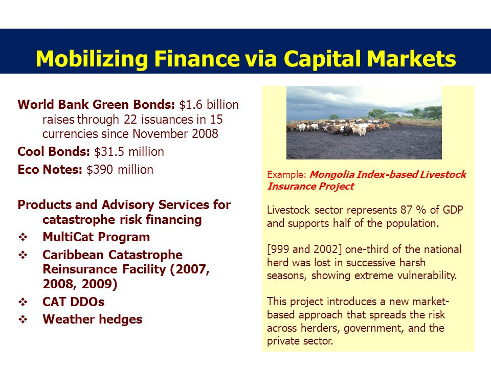 Mobilizing Finance via Capital Markets World Bank Green Bonds: $1.6 billion raises through 22 issuances in 15 currencies since November 2008 Cool Bonds: $31.5 million Eco Notes: $390 million Products and Advisory Services for catastrophe risk financing MultiCat Program Caribbean Catastrophe Reinsurance Facility (2007, 2008, 2009) CAT DDOs Weather hedges Example: Mongolia Index-based Livestock Insurance Project Livestock sector represents 87 % of GDP and supports half of the population.