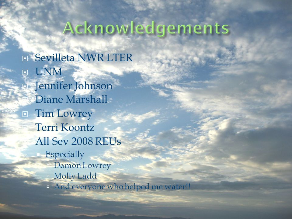 Sevilleta NWR LTER UNM Jennifer Johnson Diane Marshall Tim Lowrey Terri Koontz All Sev 2008 REUs Especially Damon Lowrey Molly Ladd And everyone who helped me water!!
