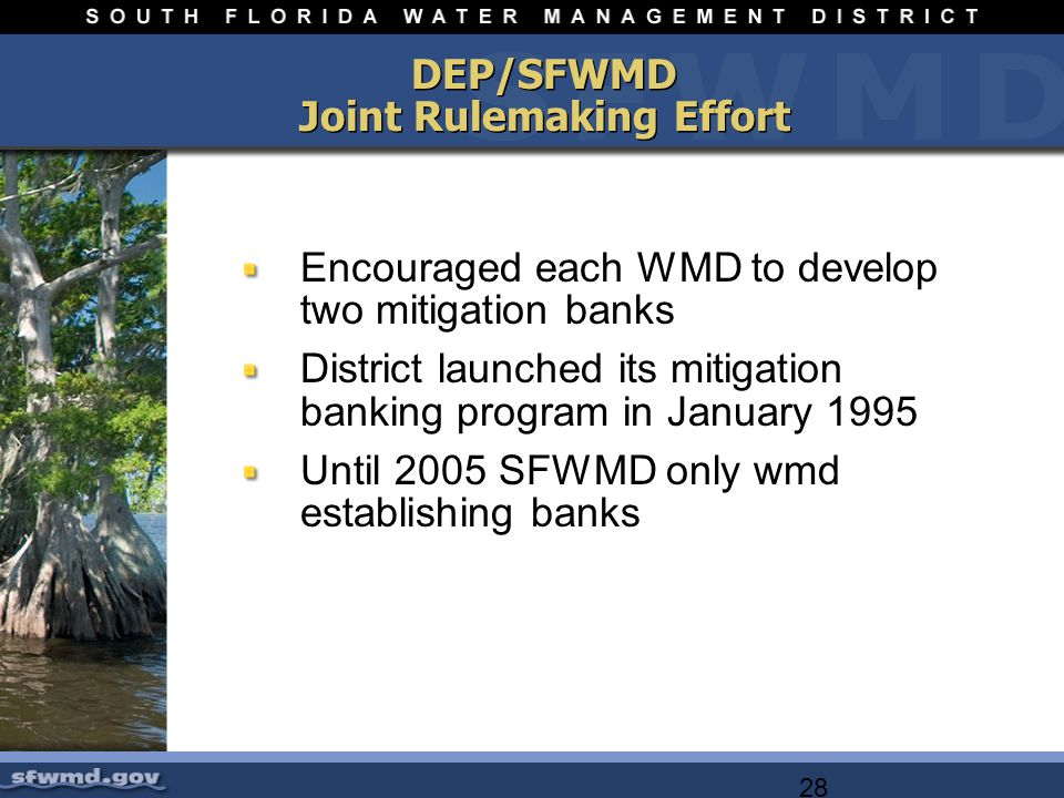 28 DEP/SFWMD Joint Rulemaking Effort Encouraged each WMD to develop two mitigation banks District launched its mitigation banking program in January 1995 Until 2005 SFWMD only wmd establishing banks