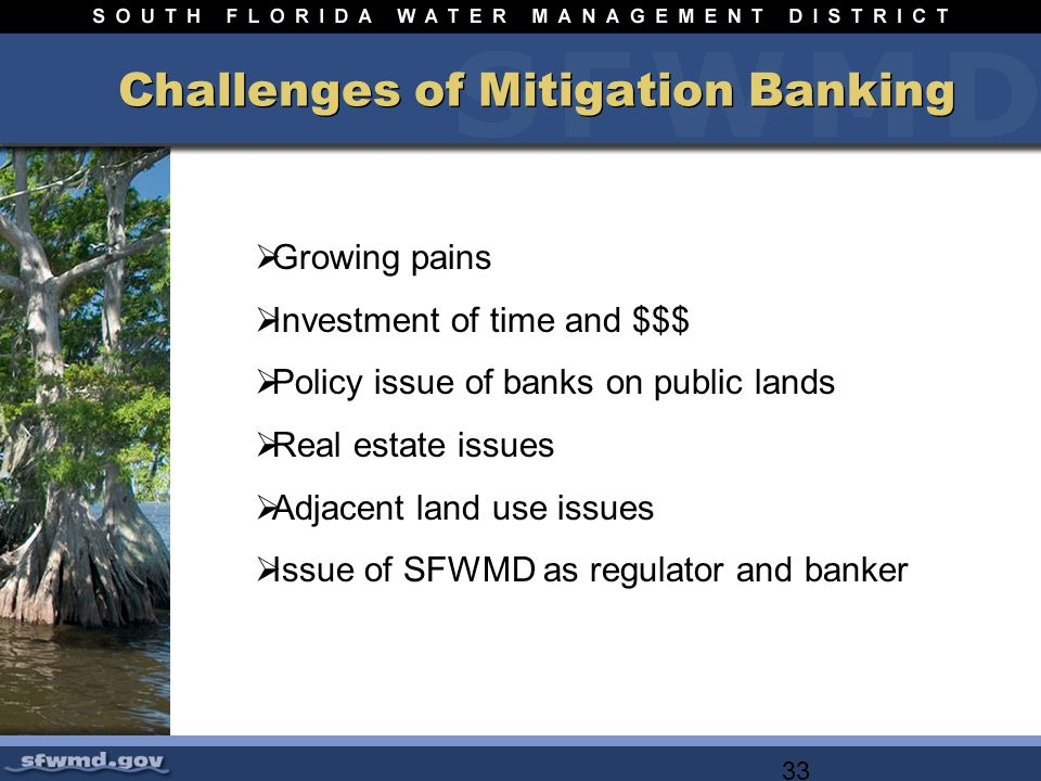 33 Challenges of Mitigation Banking Growing pains Investment of time and $$$ Policy issue of banks on public lands Real estate issues Adjacent land use issues Issue of SFWMD as regulator and banker