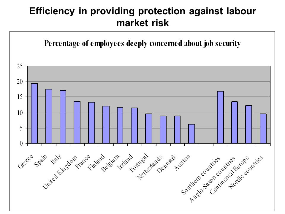 Efficiency in providing protection against labour market risk