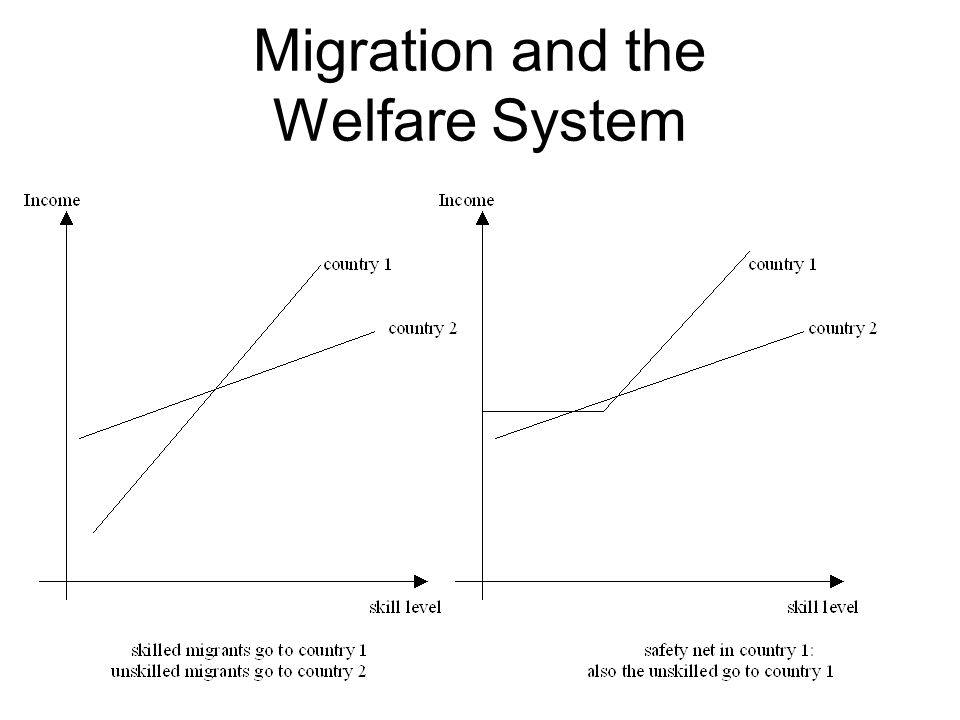 Migration and the Welfare System