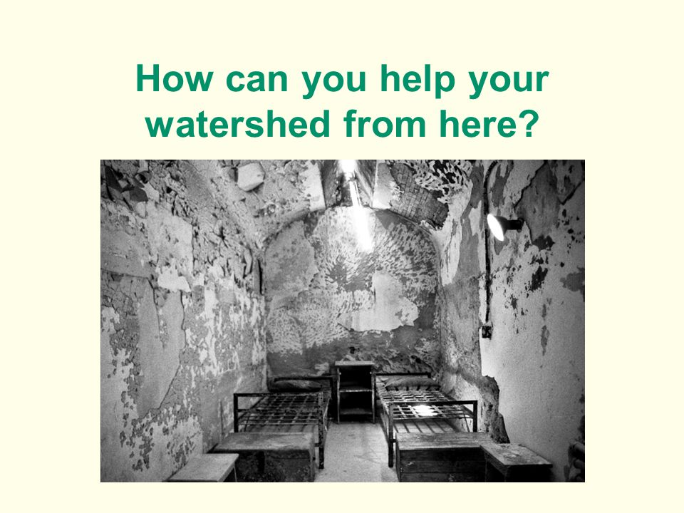 How can you help your watershed from here